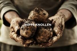 GourmetGuerilla Hippe Knollen Blogevent Header #gourmetguerilla #kartoffeln #rezepte