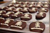 chocolate-sugar-cookies7