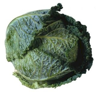 Savoy cabbage : Substitutes, Ingredients, Equivalents