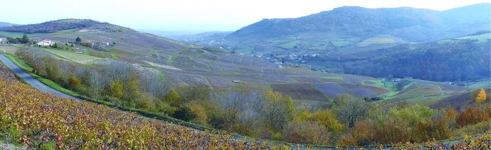 2014-11 panoramique Beaujolais