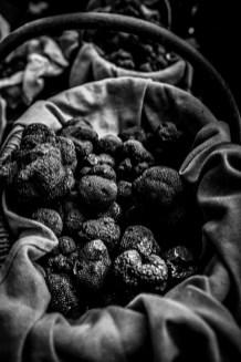 les truffes 2015-65