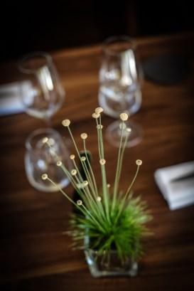 Allium © Olivier MARIE-5