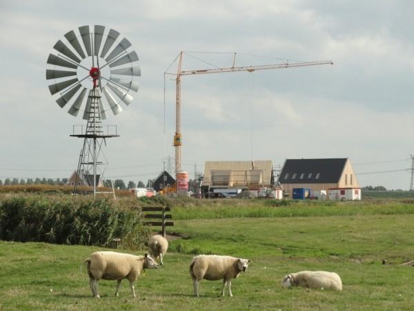 Polder molen aan de Hounsdyk in gevaar