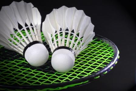 De Leeuwarder Badminton Club nodigt u uit