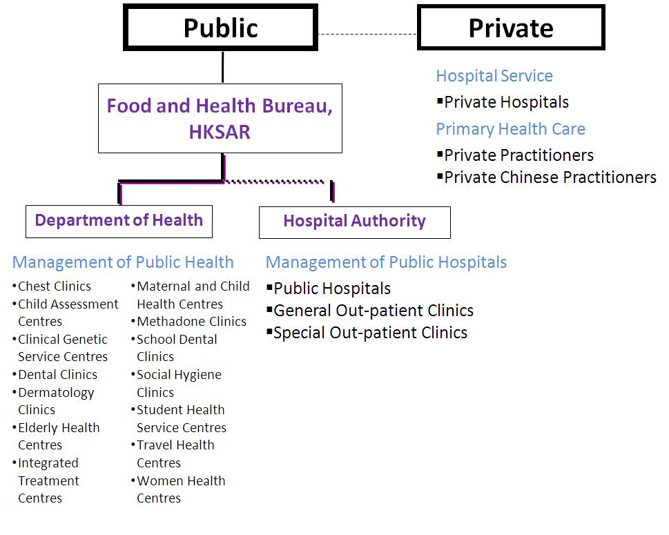 Overall structure of the healthcare system