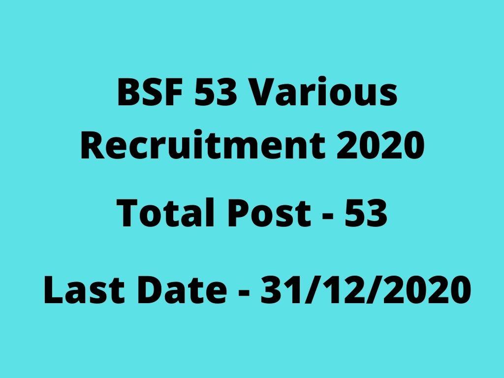 BSF Pilot, Engineer & Other Recruitment