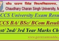 CCS University Result 2019