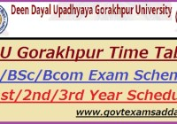 DDU Gorakhpur Time Table 2020