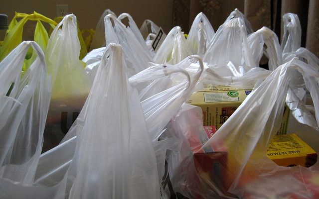 multiple carrier bags of food shopping
