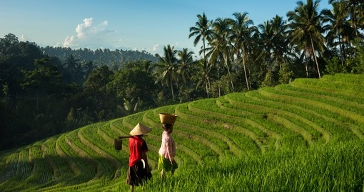Indonesia Geography And Maps Goway Travel