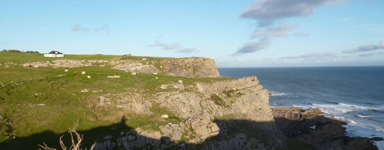 Clover Cliff, Rhossili, Gower