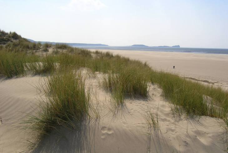 Sand dunes at Llangennith, Gower