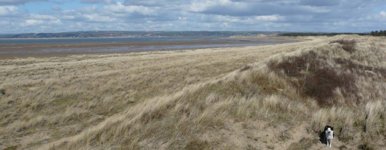 Whiteford Sands and Burrows, Gower Peninsula