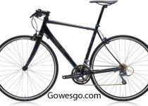 Sepeda Polygon Helios F1