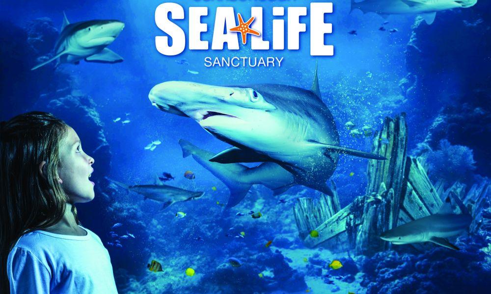 SEA LIFE Scarborough