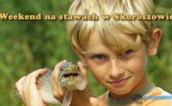 Weekend na stawach w Skoroszowie gozdawaryby.pl