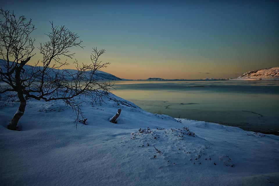 Arctic life – travel update Norway