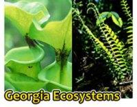Aquatic Ecosystems: Aquatic Ecosystems Matching