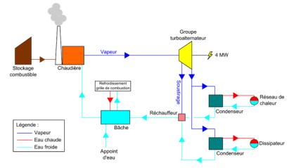 Schema cogeneration