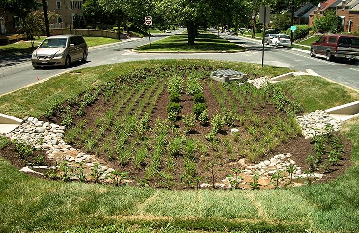 Dennis Avenue - 3LID Project Bioretention