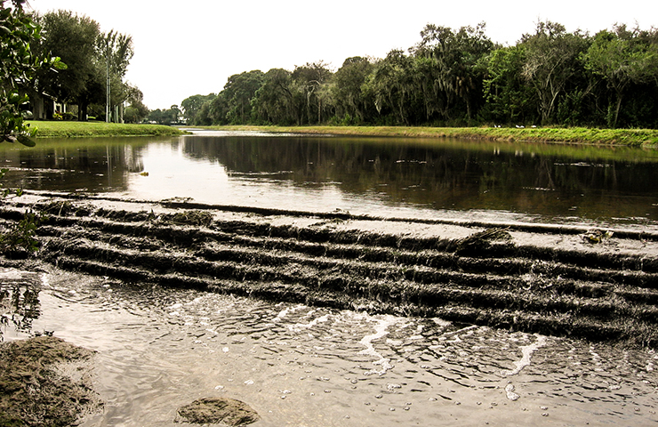 Salinity Barrier Removal