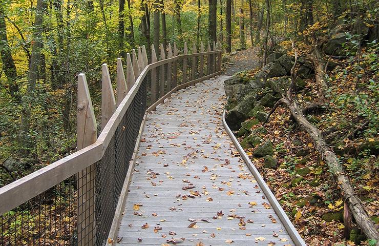 Baldwin Interpretative Trail