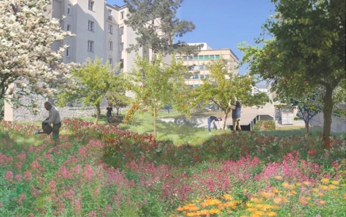 le jardin du campus necker