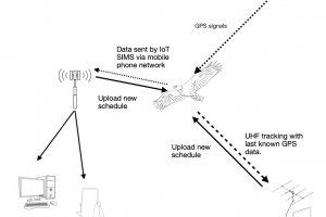 FLiteTrax GPS/GSM Wildlife Telemetry Avian Tags.
