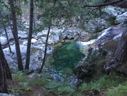 Rivière et Foret : GR20 sud