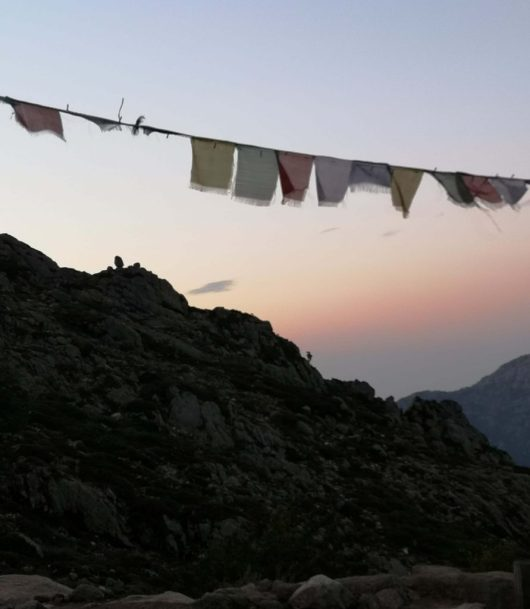 Tibetan prayer flag - GR20