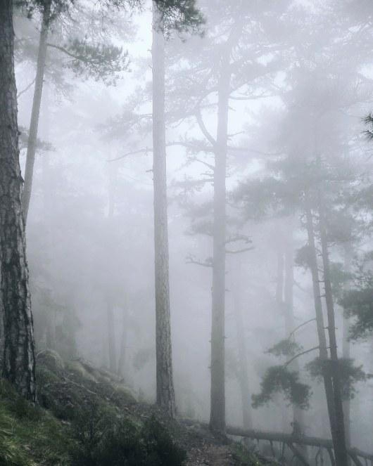 brume-brouillard-corse-gr20-mai