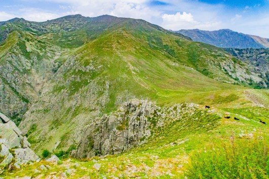 green-mountains-in-corsica-june