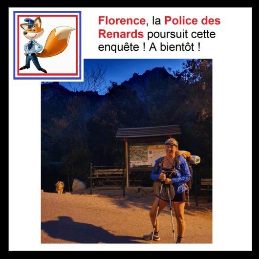 police-renard-enquete