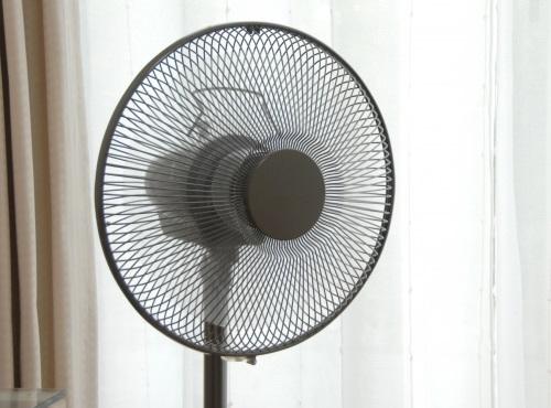 めざましテレビ:今バカ売れ扇風機ベスト5!DCモーター搭載 山善やアイリスオオヤマ