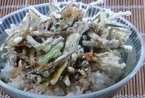 【ダウンタウンDX】石倉三郎の超簡単レシピ!だしじゃこの天ぷら