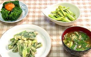 【あさイチ】にらのレシピ!万能調味料やおひたし、つけもの、卵とじ汁