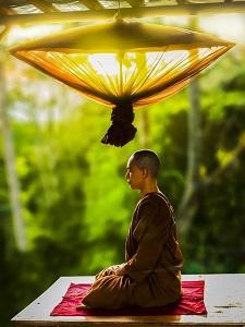 瞑想、お寺、お坊さん