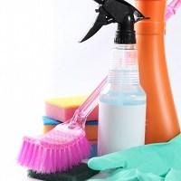 掃除、ブラシ