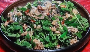 【名医の太鼓判】パクチ―納豆、ニラさばのレシピ!中性脂肪を抑える!石井明美
