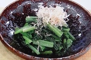 【あさイチ】しょうゆ洗いとは?小松菜(青菜)おひたしのレシピ!