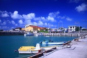 漁港、魚、海