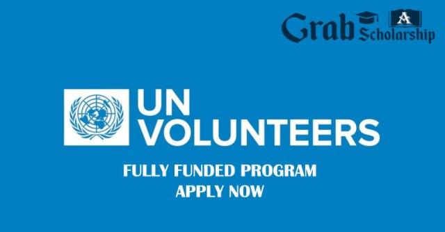 UN Volunteers Program 2020
