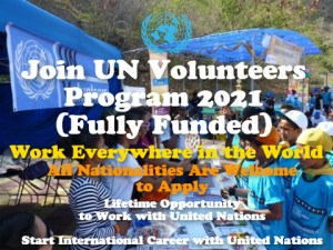 UN Volunteers Program 2021