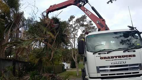 More Green Waste Removal on the Gold Coast
