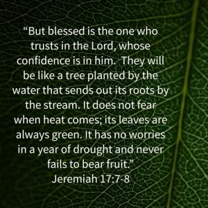 Jeremiah 17_7-8