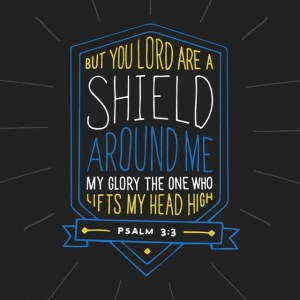 psalm-3_3
