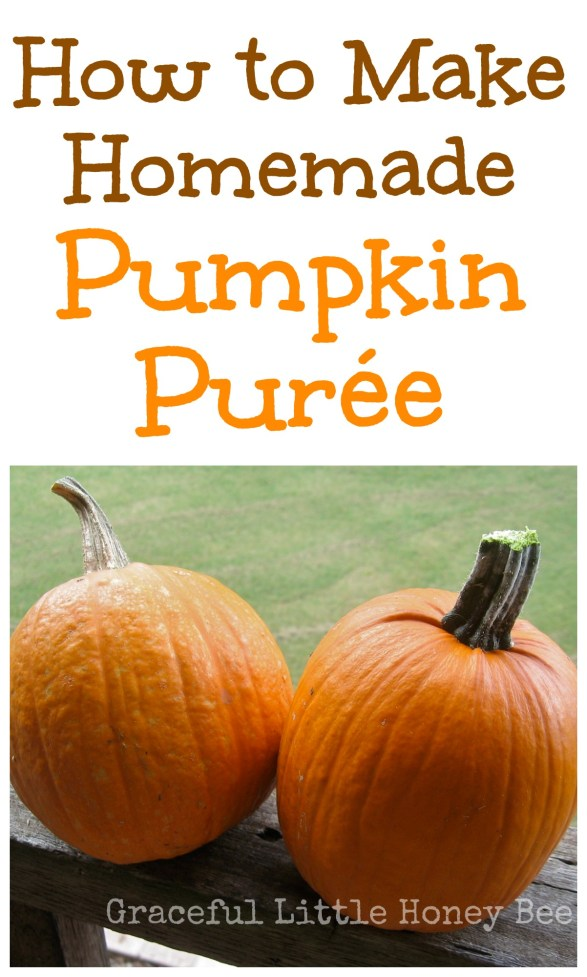 Learn how to make homemade pumpkin purée from pie pumpkins to freeze for use all year long!