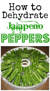 How to Dehydrate Jalapeños on gracefullittlehoneybee.com