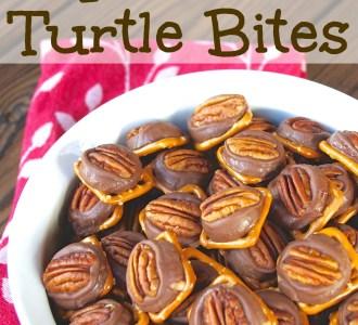 Pretzel Turtle Bites on gracefullittlehoneybee.com