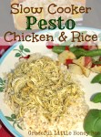 Pesto Chicken & Rice on plate.